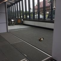 MRT Station for National Museum